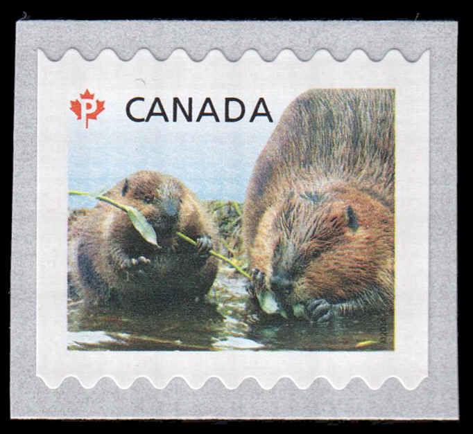 Buy Canada #2710A - Beavers (2014) P (85¢) | Arpin Philately