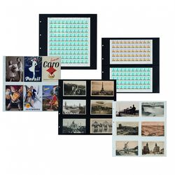 maximum sheets for postcards or mint sheets pack of 5 sheets