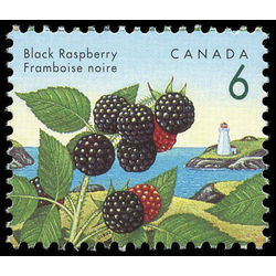 canada stamp 1353 black raspberry 6 1992