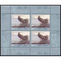 quebec wildlife habitat conservation stamp qw2a black ducks by claudio d agelo 1989 m vfnh 001