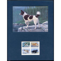frameable prints 1988 tahltan bear dog