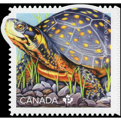 canada stamp 3179a spottled turtle 2019