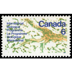 canada stamp 507 interior of a leaf 6 1970
