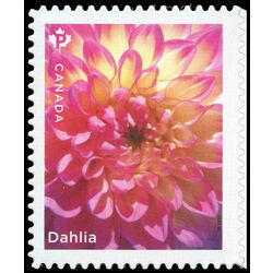 canada stamp 3237 dahlia single pink flower 2020